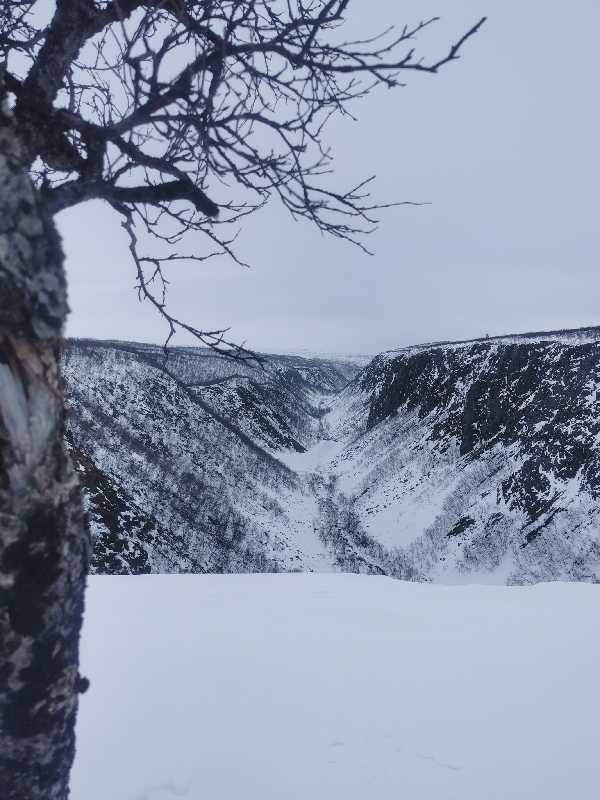 Kevo, Kevon kanjoni, Kevon luonnonpuisto